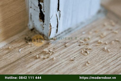 Cửa gỗ tự nhiên với khả năng chống mối mọt tốt